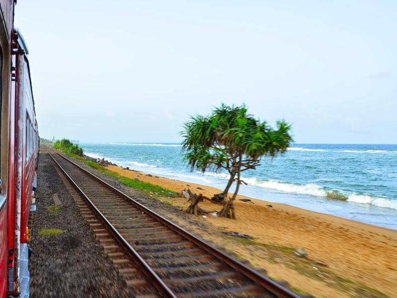 Colombo to Galle Train Tour