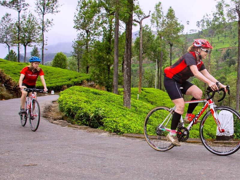 Cycling Tour in Nuwara Eliya