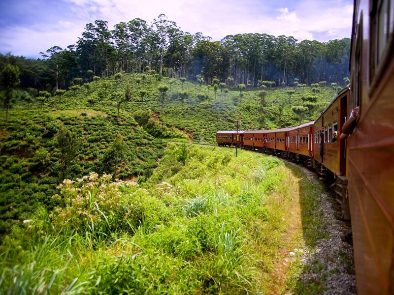 Kandy to Badulla Train Tour