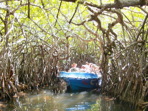 Maadu River Boat Ride