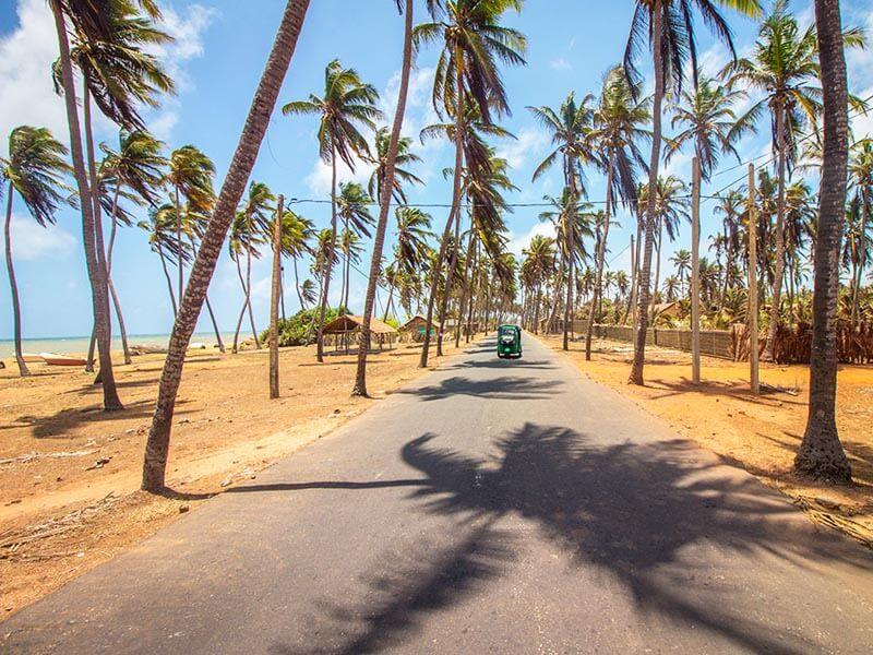 Negombo Tuk Tuk Tour