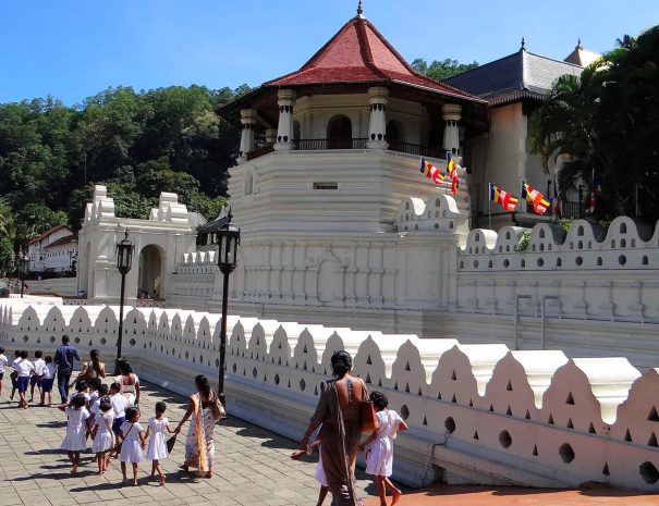Private Day Tour to Kandy