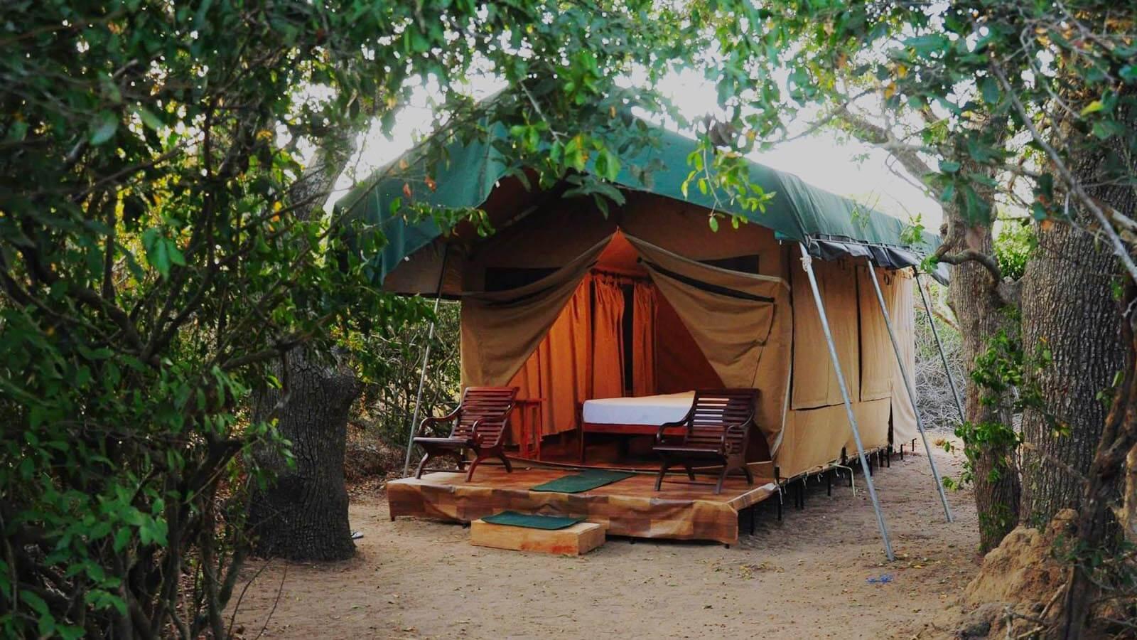 Sri Lanka Camping Safari Tours
