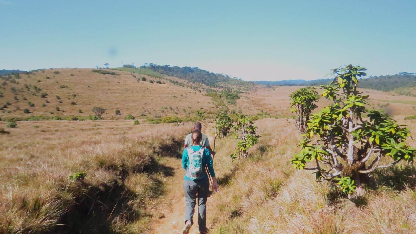 Trekking and Hiking in Sri Lanka